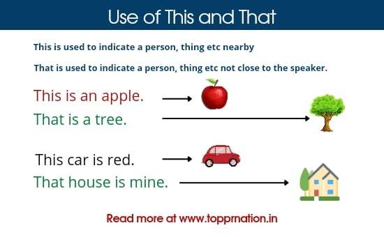 Use of This and That With Examples